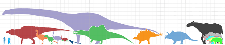 Artist's impression showing the sizes of different land animals compared to humans.