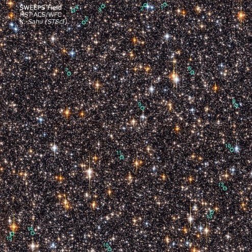 Photograph of stars within the SWEEPS Field.