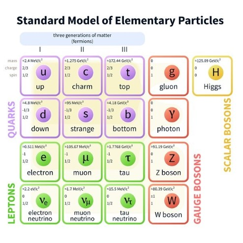 Diagram showing the standard model of particle physics. Matter is composed of leptons and quarks. There are six quarks and six leptons. There are also four gauge bosons plus the Higgs boson.