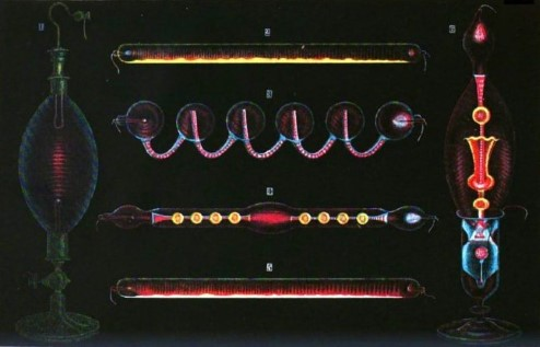 Coloured drawing of Geissler tubes.