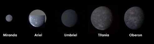 Photographs of Uranus' moons, where the size is to scale.